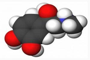 Природні джерела органічних речовин. Природний і супутній нафтові гази, їхній склад, використання