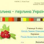 Презентація-проект Калина – перлина України